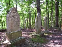 Gravestones in Burfordville (trint) Tags: burfordville semo missouri capegirardeau mill village rural grave cemetary gravestones graveyard goth