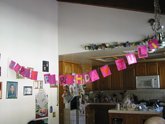 happy birthday juli (Lorena Cupcake) Tags: bean dog puppy pet chihuahua beaner mexico mexican canine cholo