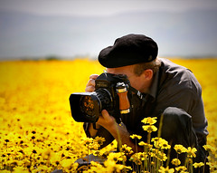 photog in the flowers (Sara Heinrichs (awfulsara)) Tags: saveme saveme2 saveme3 saveme4 deleteme saveme5 saveme6 saveme7 saveme8 saveme9 saveme10 savedbythedeletemegroup saveme11