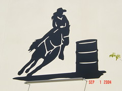 DSC05049 (Faded Photograph) Tags: horse art leaves silhouette mural end cowgirl twigs favorited dram florida04