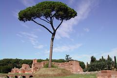 Landscape of the Ancient Rome