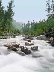 A natural stream (UmX) Tags: pakistan water stream abbottabad