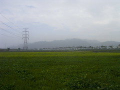 (judie35) Tags: winter field landscape taiwan sanyi