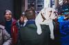 Midtown, 2016 (mathiaswasik) Tags: nyc newyork usa street photography ricoh dog midtown people