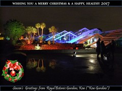 "Kew Gardens Christmas Card 2016 (Kam Hong Leung – KEW Gardens_01) Tags: ""beatriceleung"" ""kamhongleung"" ""leungkamhong"" 'brianpitcher' kew ""kewgardens"" ""royalbotanicgardens kew"" 'rbgkew"" rbg biodiversity london wildlife science education garden flower ""friendofkew"" ""patronofkew"" flora fauna ""londonpark"" park conservation ecology environment nature plant ""palmhouse"" ""temperatehouse"" ""princessofwalesconservatory"" ""waterlilyhouse"" ""yourkew"" ""naturalneighbourhood"" ""glasshouse"" ""greenhouse"" ""carlosmagdalena"" ""elisabiondi"" contest competition winner green photo photography macro flickr gallery facebook twitter 'growwild' 'nationallottery' christmas xmas"