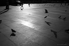 stanbul_0003 (czako_o) Tags: street people urban bw silhouette turkey tour ps streetbw wnwthebirds