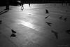 stanbul_0003 (czako_o) Tags: street people urban bw silhouette turkey tour ps streetbw wnwthebirds
