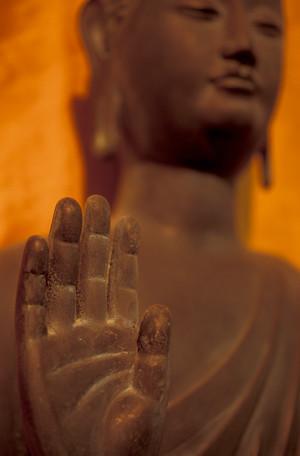 Standing Buddha Rupa 2