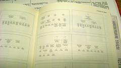 IMG_0174.JPG (thmvmnt) Tags: design information timelines infographics