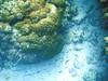IMGP0107 (武蔵大学サイクリング部2001-2005) Tags: sea geotagged scenery miyakojima cyclememories1a nagamahama geo:lat=24728395 geo:lon=125240407 2006cyclolkyoudai miyakojimascenery seacyclo