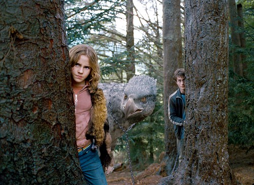 Hermione con Harry Potter