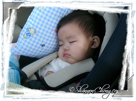 Rachel Sleeping Through the Journey