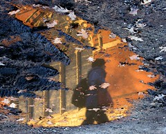 rotated reflection of memorial hall (sandcastlematt) Tags: cambridge reflection puddle mud massachusetts harvard harvarduniversity memorialhall bostonist interestingness65 universalhub guesswhereboston foundinboston