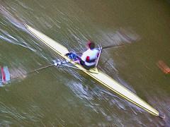 Rudern, rowling (Roman-Achim.G.) Tags: sports water sport wasser flu ulm rowling donau rudern ruderer ruderclub