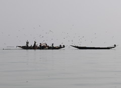 India Orissa - Chilika Lake