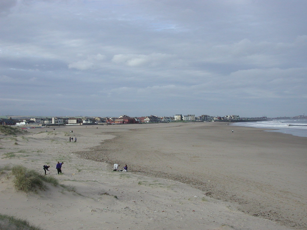 North Gare Sand Dunes - Seaton Carew