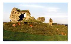 clonmacnoise (.finding.ireland.) Tags: november 2002 ireland irish green landscapes eire celtic eireann findingireland anawesomeshot ainmhithe pinterest