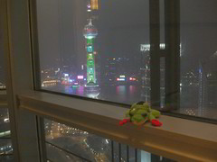 Rodrigus the Frog on 54th Floor of Hyatt, Shanghai