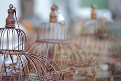 Bird cages (javame) Tags: ca birdcage wire nikon dof bokeh cage antiques d200 nikond200 rosevilleca northernsacramento