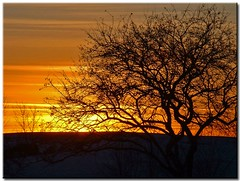 Another January Sunset (3) - by Roger Lynn