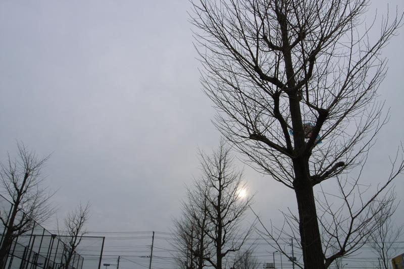 today's sky 070121