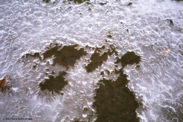Lattices of Lace - Ice Forming on the Mississippi River