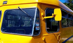 Yellow Bus (geoftheref) Tags: new travel newzealand music cloud white west color colour bus nova yellow festival island coast la interestingness interesting long flickr bass south vivid zeeland zealand nz land kiwi aotearoa nueva nouvelle 07 phat zelanda neuseeland zelandia nuova drun nieuw zelândia новая zélande ニュージーランド geoftheref νέα 뉴질랜드 зеландия ζηλανδία