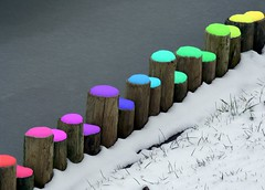 Colored Snow (Creativity+ Timothy K Hamilton) Tags: snow color saint st garden botanical louis rainbow 500v20f minolta oneofakind stlouis mo missouri 5d colored konica stl coolest hue chromatic maxxum chroma mobot catchycolorsrainbow 1500v60f 1000v40f timothykhamilton del10
