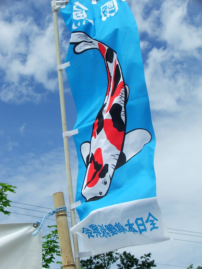 The world 39 s best photos by nicole hamm flickr hive mind for Japanese flag koi