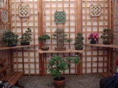 Chinese Garden (OldRoses) Tags: japanesegarden newjersey nj conservatory greenhouse zen bonsai dukegardens dorisduke displaygarden 1000placesusa savedukegardens