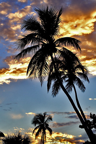 Sanibel Island, Florida; Photography by Troy Thomas