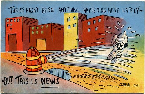 Postcard:  Hydrant Wets Dog.