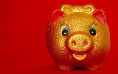 Year of the Golden Pig (!) (NowJustNic) Tags: china home catchycolors pig nikon chinesenewyear newyear  piggybank  lunarnewyear  springfestival chunjie   yearofthepig haidiandistrict d80 nikkor18135mm  dongwangzhuang