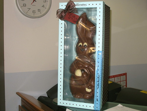 This chocolate bunny is huge. There is a ruler against the box to give some scale.