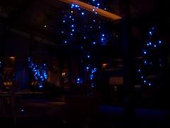 Illumination in courtyard #1 (RYO@flickr) Tags: geotagged tokyo illumination courtyard  regina exz55 blueled kinshicho    ryoflickr 20070208  restaurantregina  led illuminationincourtyard geo:lat=35695419 geo:lon=139816829