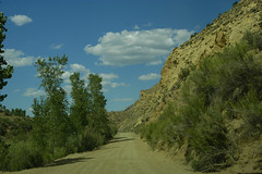 Cottonwood Road 13589