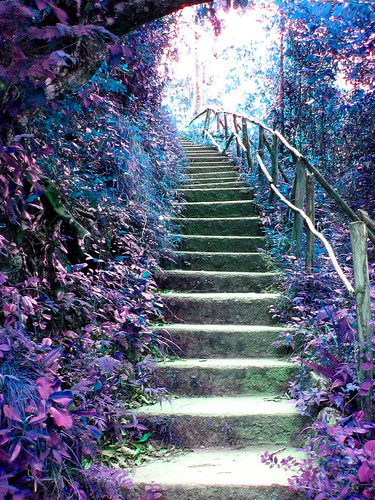 Steps To Fairyland 2