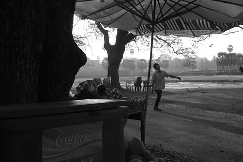 Coca Cola Umbrella