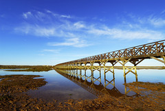 a bridge to paradise (wise wolf (raul.r.goncalves)) Tags: bridge portugal algarve riaformosa quintadolago pffg pffgalgarve2007