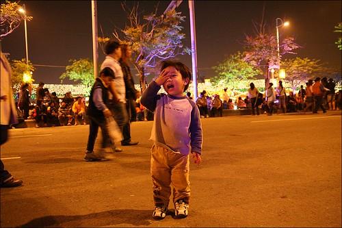 2007台灣燈會在嘉義147