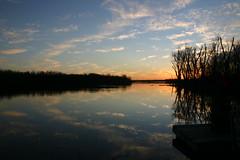 Clouds In The Water Ⅹ (mightyquinninwky) Tags: trees sky water clouds reflections evening december kentucky lexingtonky richmondroad fayettecounty centralkentucky ellserlielake