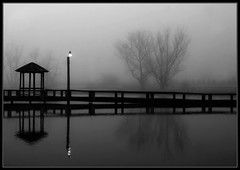 A Foggy Morning in Black & White (Thomas_McKane) Tags: sharingexposures bachspicsgallery