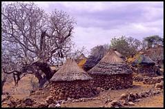 Oudzilla Cameroon Traditional Huts (Stephen van der Mark) Tags: africa red beautiful wow interesting poor rocky huts stunning baobab cameroon mandara