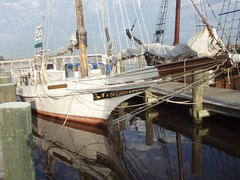 Skipjack Chestertown