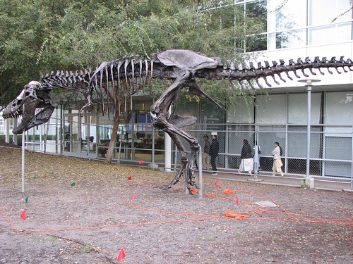 Google-Dinosaurier