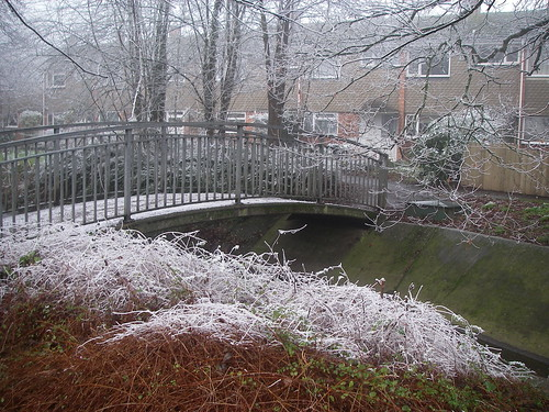 Bridge in Frost