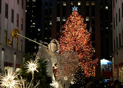 The Tree at Rockefeller  Center - by Dr.DeNo