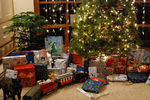 Under the tree, after Santa's arrival.  (Cat not from Santa)