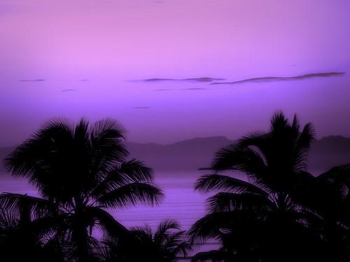 The violet beach