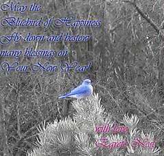bluebirdofhappiness